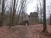Burg im Wald...