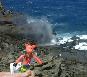 Miranda at Eddie's Blowhole