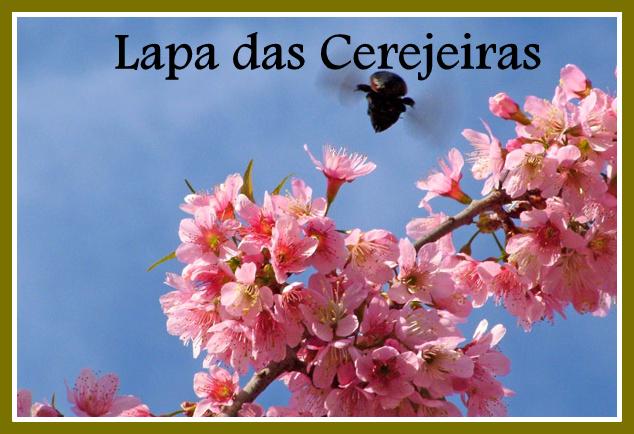 Lapa das Cerejeiras