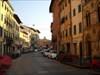 Orto botanico di Pisa log image