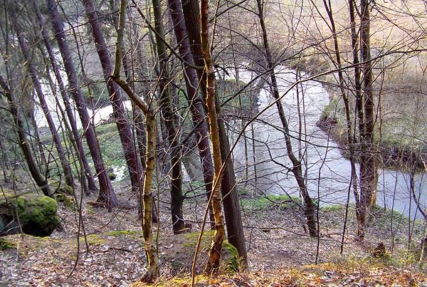 Meandry Robečského potoka
