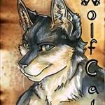 wolfcatsden