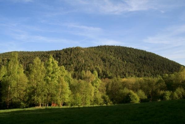 Maierova skala z upati Radkovskeho vrchu