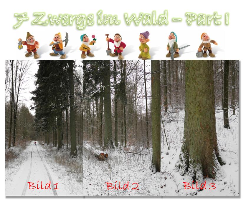 7 Zwerge im Wald - Part I