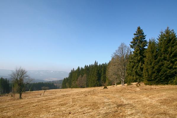 Louky na Tiefenau s Jezernicí