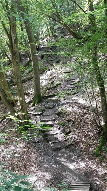 Treppen im Prinzbachtal