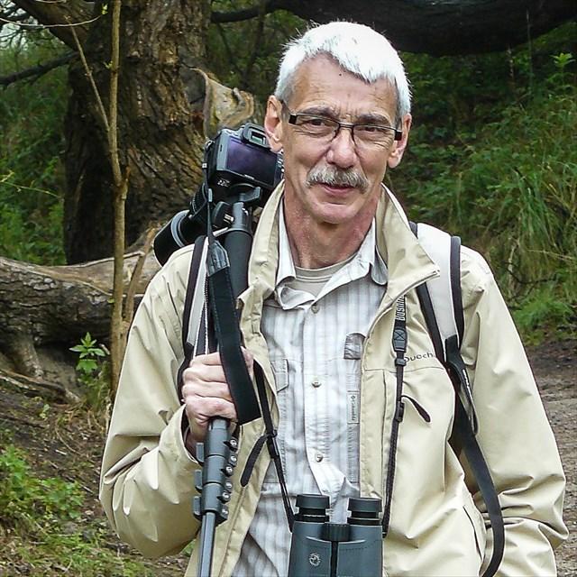 avatar de foxprof