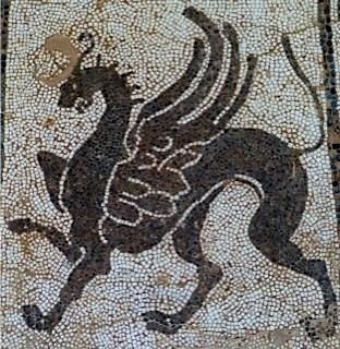 avatar de Xero49