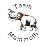 team mammoth