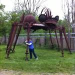 spider16