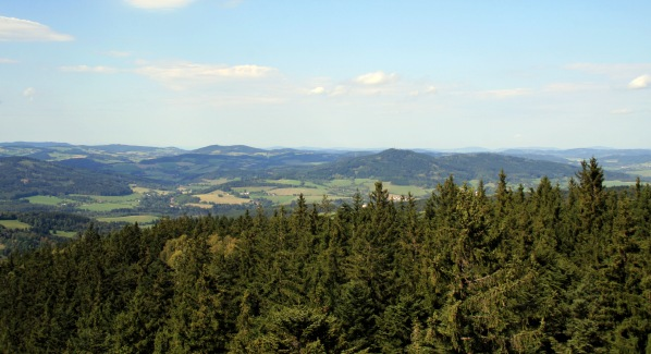 Pohled z rozhledny ke Svatoboru a Borku