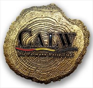 My Hometown Coin (Vorderseite)