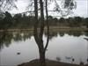Half Jasmer lake