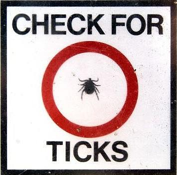 You can prevent Lyme Disease