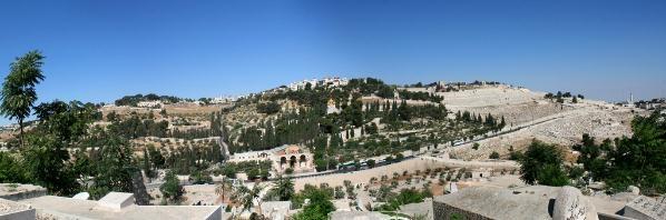 Panorama Olivové hory