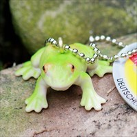 Log My Frog