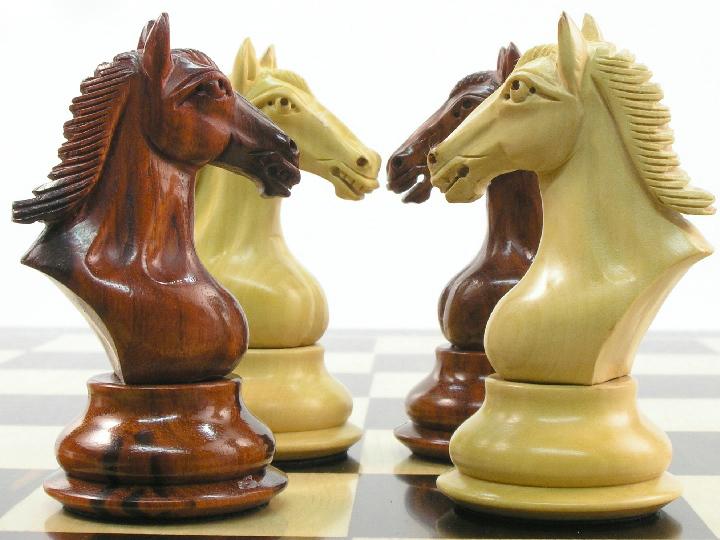 Šachový koně