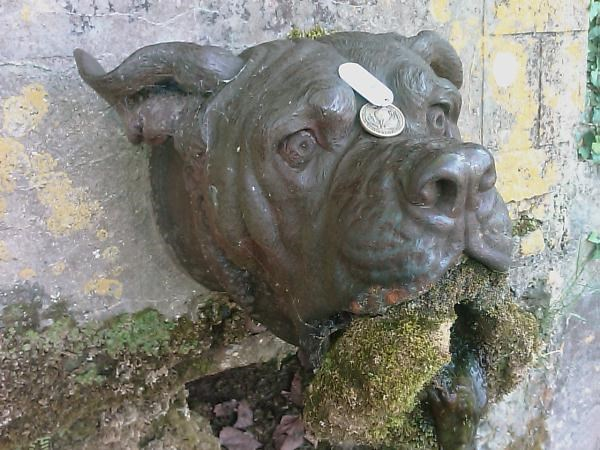 TBK5A4) Travel Bug Dog Tag - Devil Dog