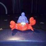 Krabbe63