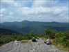 <span class=&quot;LogImgTitle&quot;>Sam&#39;s Knob NC</span><p class=&quot;LogImgDescription&quot;>I carried this TB up to the summit of Sam&amp;#39;s Knob, a short hike in the Bluer Ridge Mountains of North Carolina. Blueberries everywhere!</p>