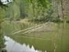 Lacul Rosu 11