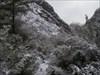Uma paisagem diferente. log image