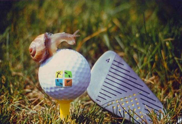 VERT golf 1