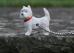 Dougal Dog Explorer TB