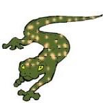 desmognathus