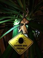 Cacher's Best Friend - Tick Tag 1