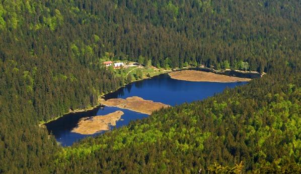 Malé Javorské jezero
