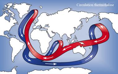 Circulation océanique actuelle, dite circulation thermohaline.