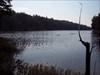 Half Mile Pond