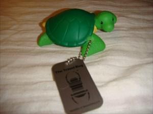 Bonjour, je suis MarGui la tortue voyageuse