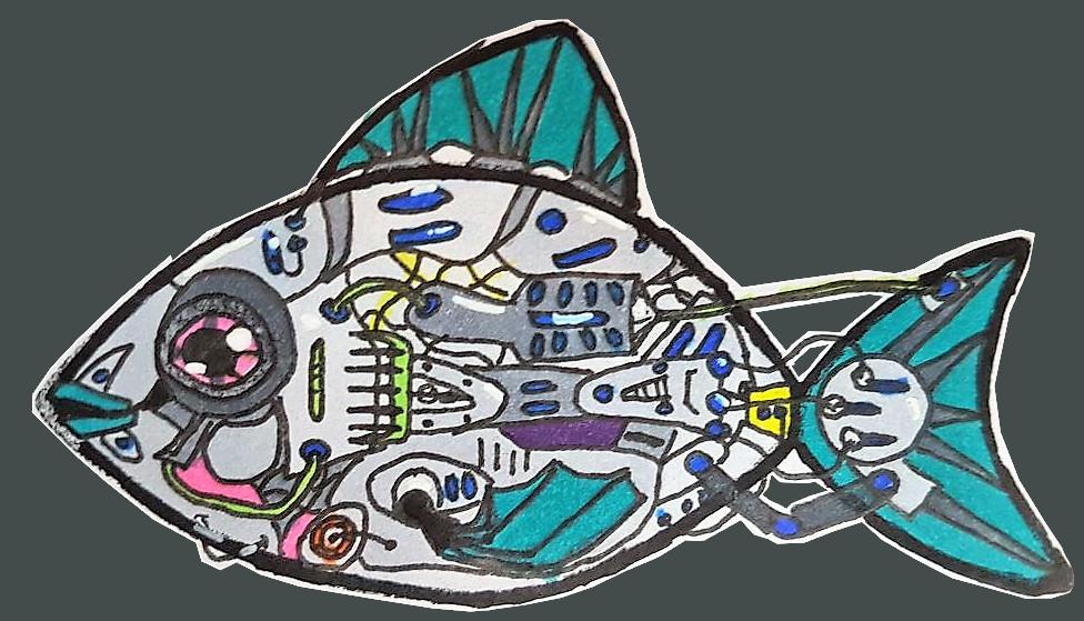 Fisch, gezeichnet von Florian Seidel