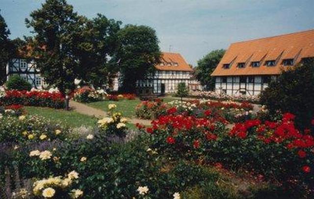 der Rosengarten in SZ-Bad in einer älteren Aufnahme