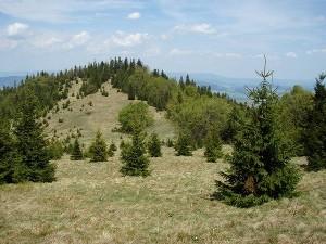 Pustá krajina v Nízkých Tatrách