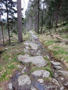 Kamenný chodník z Ostrého