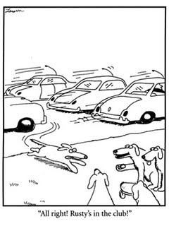 Gary Larson cartoon, dogs zipping through traffice to join the club