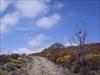 A caminho do acidentado Paraíso