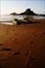 Beach Temple2