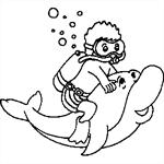 The Scuba-Divers