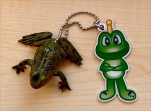 1. Žabák z Olšovce
