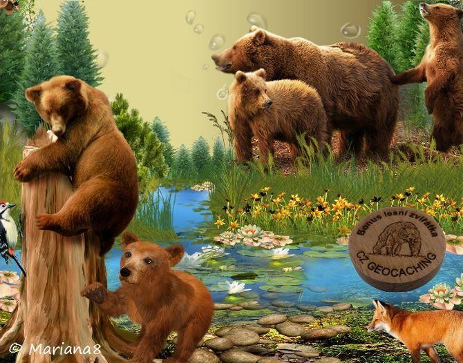 Bonus Lesní zvířátka-UNDER