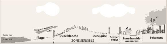 formation des dunes