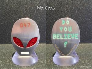 Mr. Gray Geocoin - 047