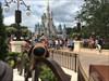 Walt Disney World  Log Image uploaded from Geocaching® App