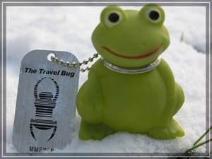 Froggy im Schnee