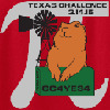 13th Annual TXGA Texas Challenge