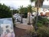 El pequeño jardín botánico El pequeño jardin del parque botánico Antonio Gómez Felipe - Los Llanos - La Palma